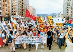 통일의 꽃이 넘은 분단의 벽 임수경 방북 사건 사진