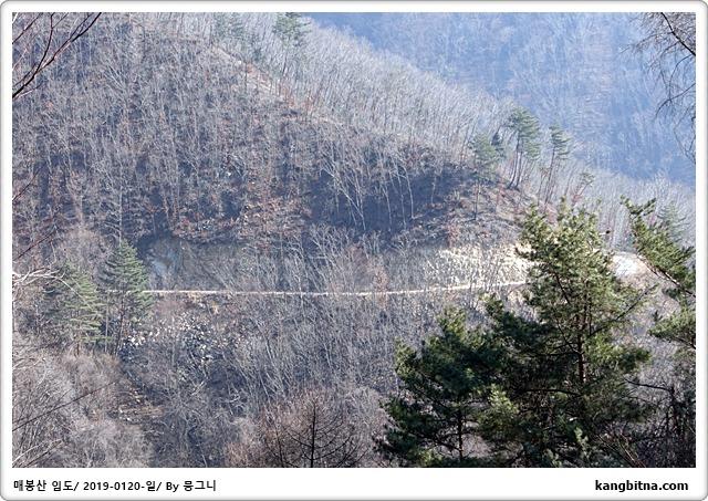 [방학#18][2019-0120-일] 매봉산 임도 7.6km(누계 91.6km)